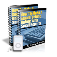 make money with small reports ebook